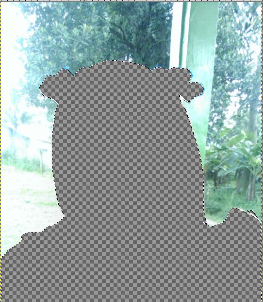 Hasil Gambar Tanpa Select - Invert
